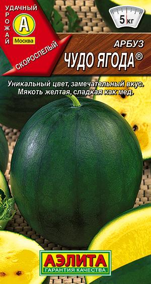 семена литопсов купить в спб